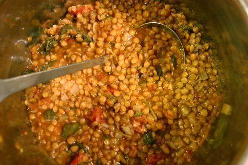 spinach & lentil soup