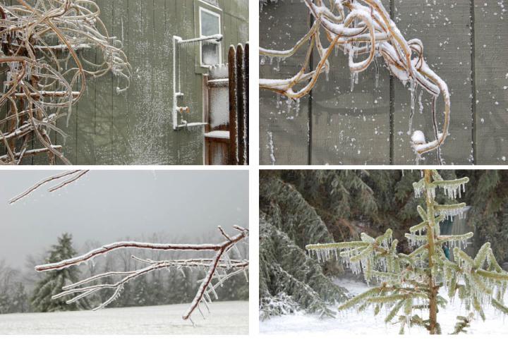 icestorm-copy