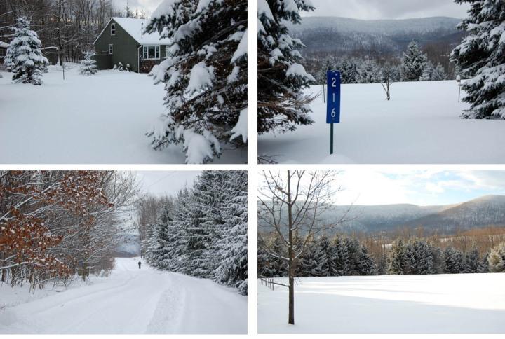 winter1-copy