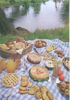 picnic copy